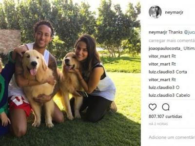 Neymar ganha cachorros de presente, os adota e registra no Instagram