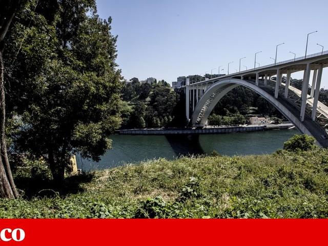 Relação confirma que câmara é dona do terreno reclamado pela família de Rui Moreira