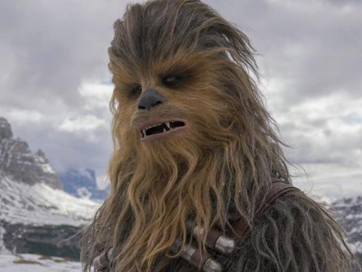 Star Wars | Chewbacca é o personagem mais buscado pelos brasileiros; veja lista