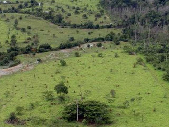 Prefeituras da Amazônia perdem mais de R$ 1 bi com imposto rural