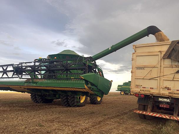 Produtividade recorde de soja pode pesar no bolso do produtor