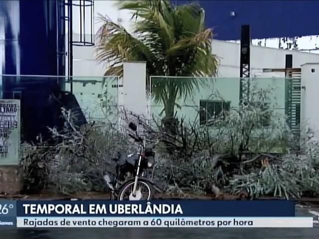 Vídeos: MG2 TV Integração Triângulo Mineiro e Alto Paranaíba de sábado, 23 de novembro de 2019