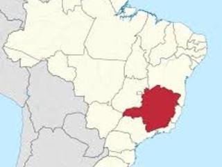 Atualização e Investigação de casos suspeitos de febre amarela silvestre em Minas Gerais