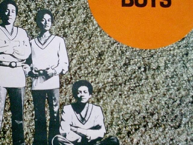 Golden Boys - Só vou criar galinha (LP 1971)
