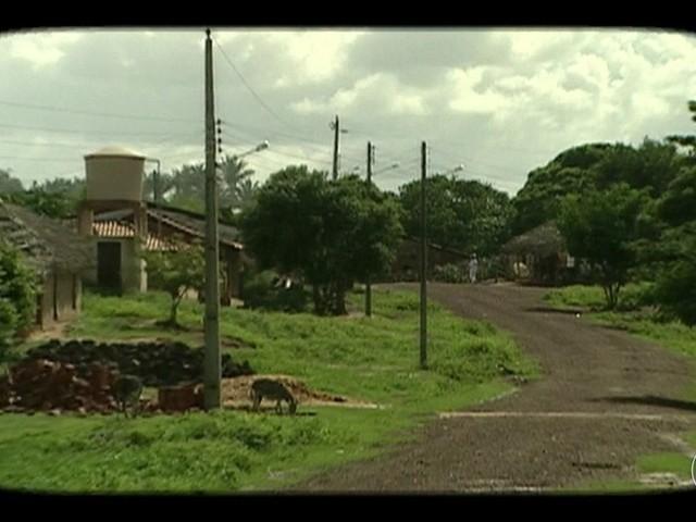 Veja como estão as quebradeiras de babaçu visitadas pelo Globo Rural há 15 anos