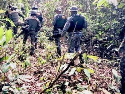 Operação de Garantia da Lei e da Ordem | Militares na Amazônia atrapalham luta contra o desmatamento, dizem fiscais