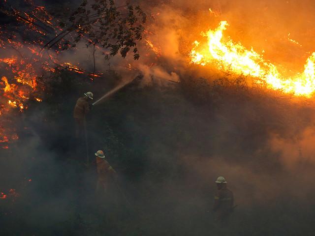 Prisão preventiva para presumível incendiária de Castelo Branco