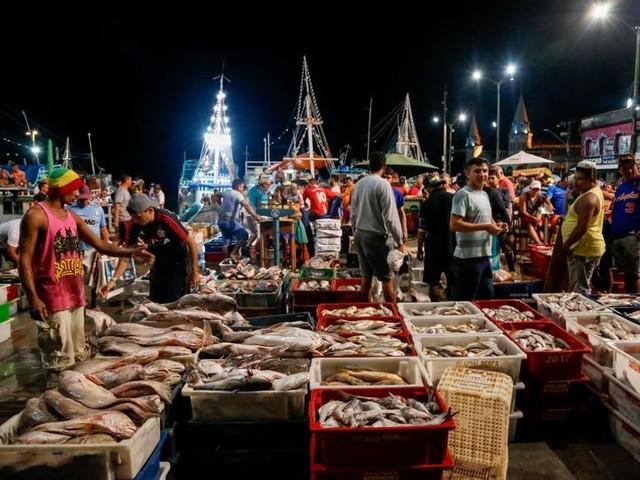 Decreto da circulação do pescado na Semana Santa começa nesta terça, 31, em Belém
