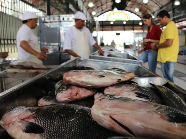 Cerca de 900 mil kg de peixe passaram por portos centrais do Amazonas no primeiro semestre de 2019