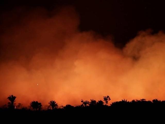 Sakamoto | Bolsonaro queima o filme do Brasil com o mundo