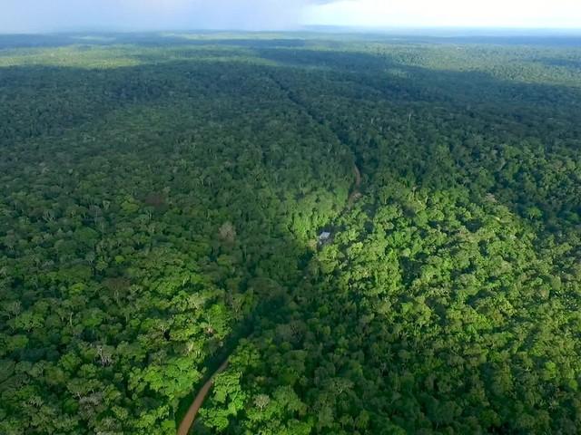 Brasil tem muito a ensinar sobre meio ambiente à Alemanha?