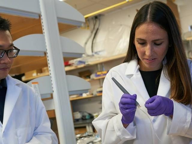 Cientista brasileira de 32 anos ganha bolsa para 'gênios'