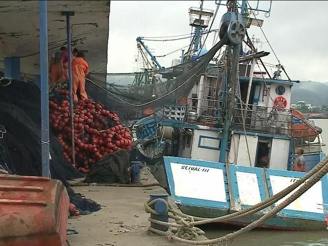 Exportação do pescado de SC tem queda de 19% entre janeiro e julho de 2018