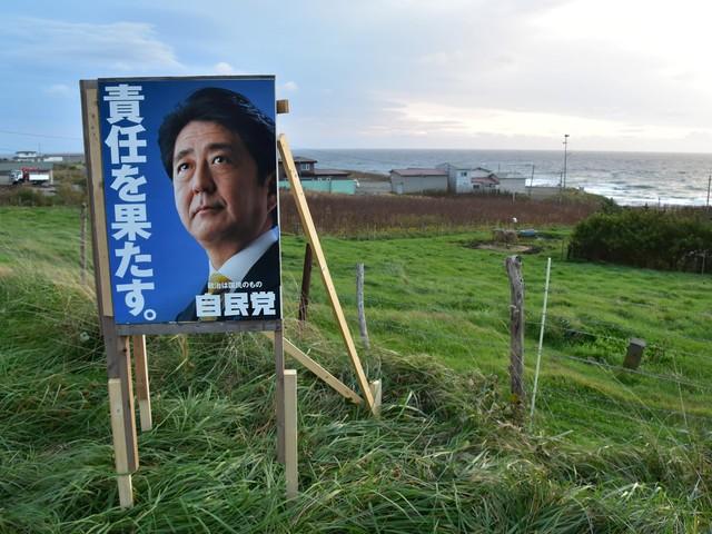 Shinzo Abe semeou para colher uma nova maioria