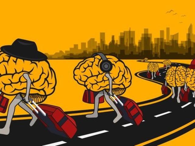 Fuga de cérebros: os doutores que preferiram deixar o Brasil para continuar pesquisas em outro país