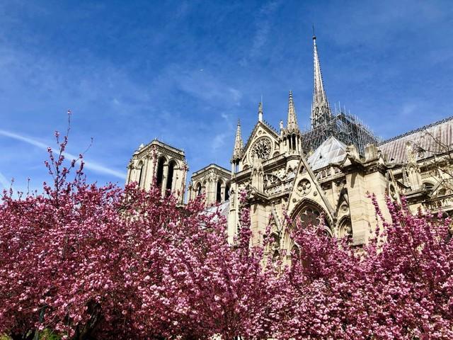 Primavera em Paris: o que fazer, o que vestir e outras dicas