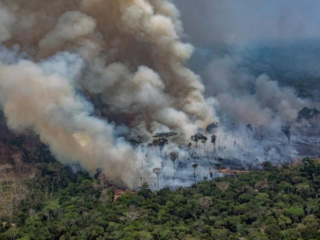 Invasões, grilagem e queimadas ameaçam áreas protegidas na Amazônia