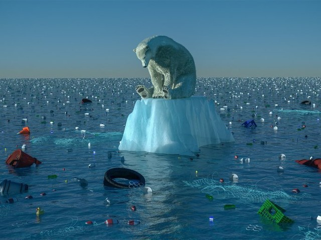 Comment on Government Cancels UN Event on Climate Change in Brazil by DCM