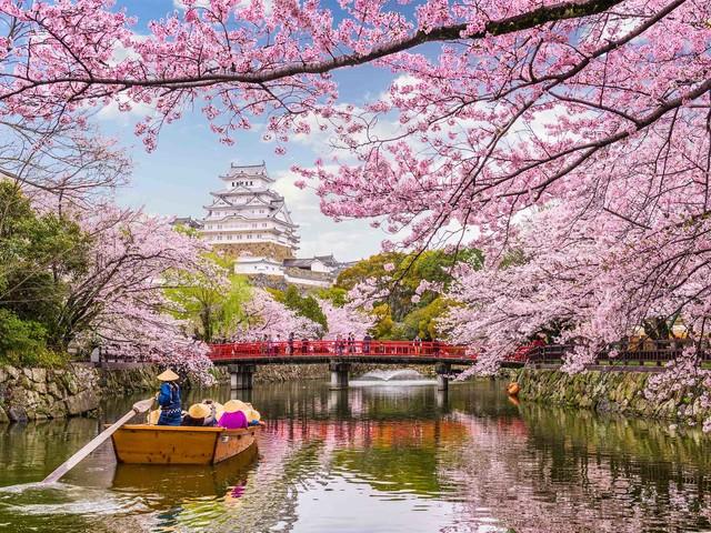 Conheça o Japão: confira uma relação de lugares que não podem faltar no seu roteiro