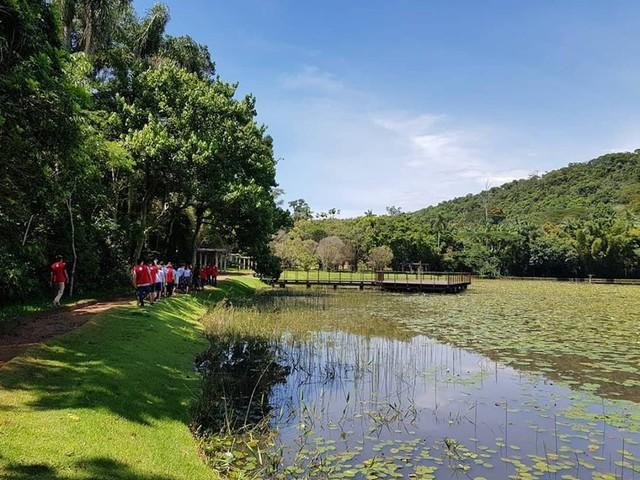 Após ser fechado por causa de onça-pintada, Jardim Botânico da UFJF reabre para visitação