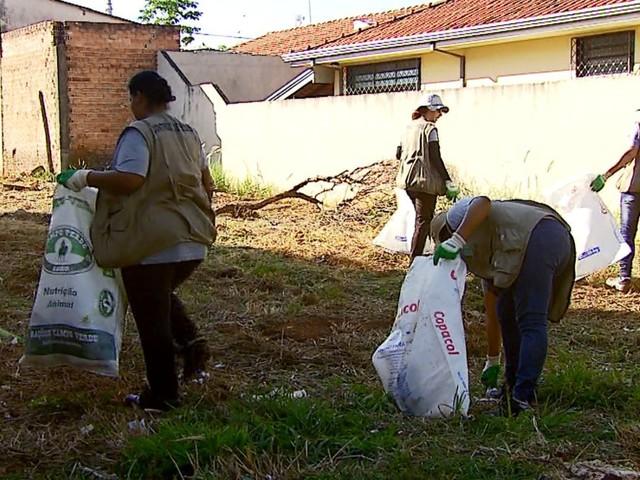 Araraquara, São Carlos, Rio Claro e outras 13 cidades têm mutirão de combate ao Aedes neste sábado