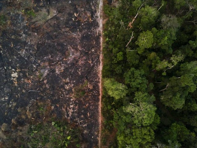 Impacto do clima em áreas protegidas ameaça meta de CO2 do Brasil