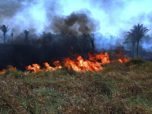 Após queimadas aumentarem 370%, Rondônia deflagra operação de combate a incêndios