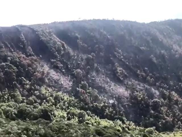 Após mais de 2 dias, bombeiros controlam incêndio no Parque do Caparaó, em MG