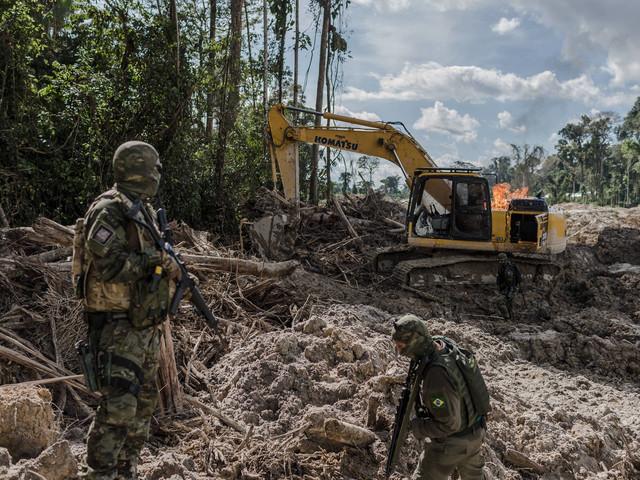 Estava em andamento | Bolsonaro desautoriza operação do Ibama contra madeira ilegal em RO