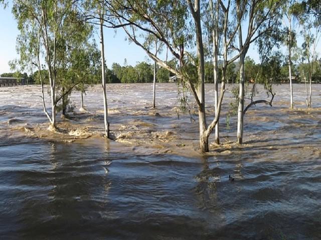 Serra Leoa: Inundações fizeram pelo menos 499 mortos