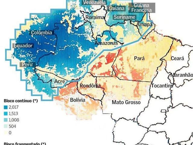 Desmatamento da Amazônia: Crime Ambiental do Clã Bolsonaro