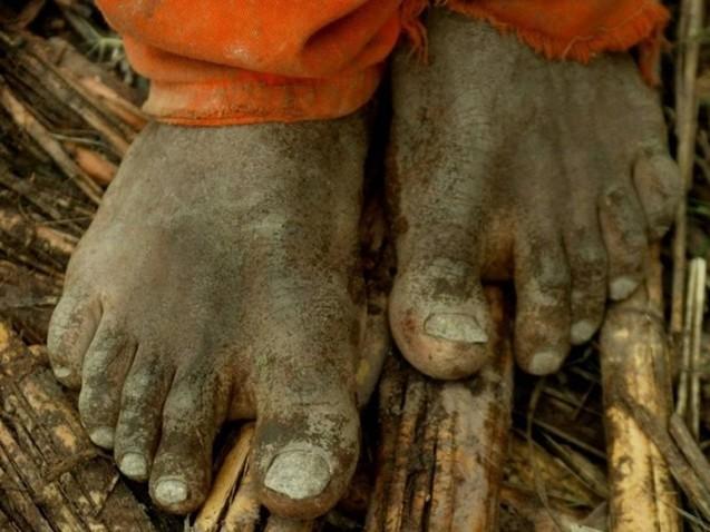 Entidades vão à ONU contra a portaria do trabalho escravo