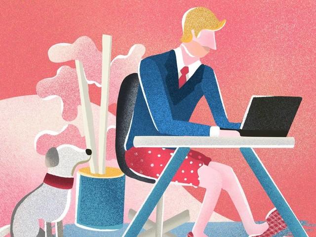 Com público de baixa formação, LinkedIn busca identidade no país