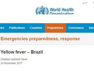 OMS: atualização - casos de febre amarela no Brasil