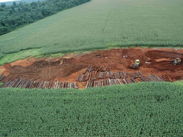"""Mourão diz que redução do desmatamento deve ser """"muito irrisória"""""""