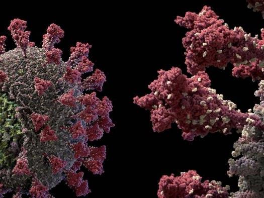Cientistas e OMS admitem: coronavírus pode ser transmitido pelo ar