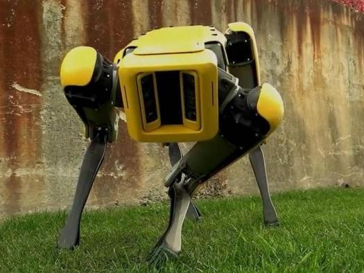 Boston Dynamics quer produzir mil robôs SpotMini por ano