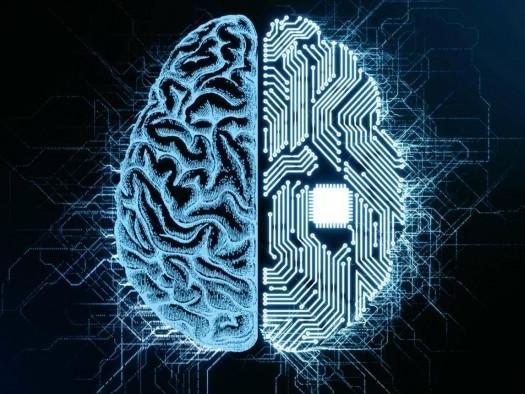 O cérebro de bilhões de terabytes