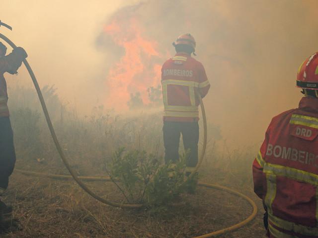 Ataque inicial aos incêndios está a falhar, acusam bombeiros profissionais