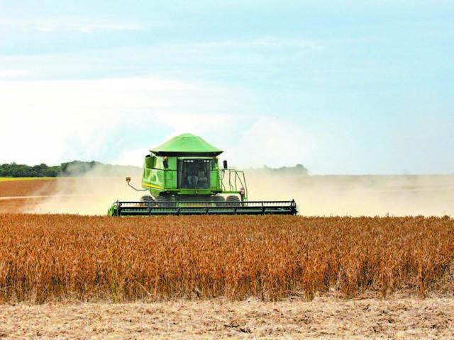 Teor de proteína de soja brasileira cai e coloca vendas à China em risco