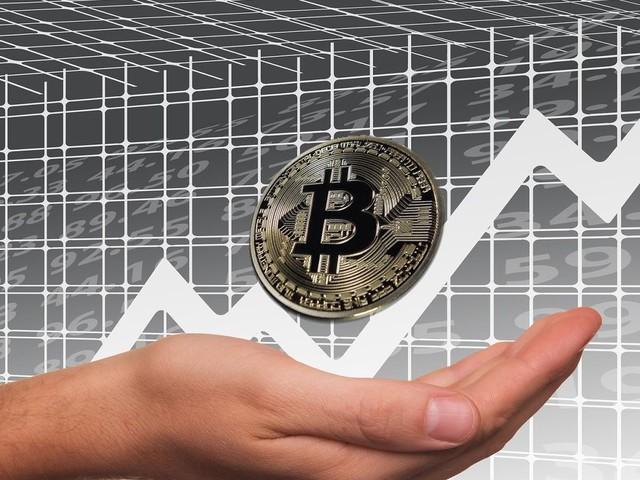 Analista prevê queda de 50% nas bitcoins, com subida firme no longo prazo