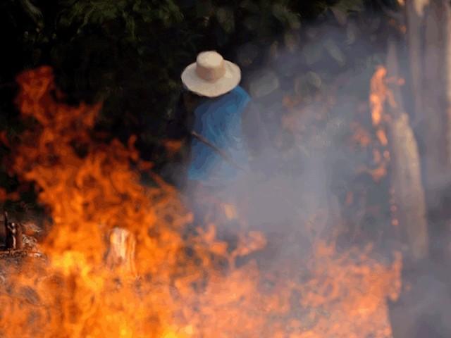 'Um verdadeiro desastre': Imprensa internacional repercute incêndios na Amazônia