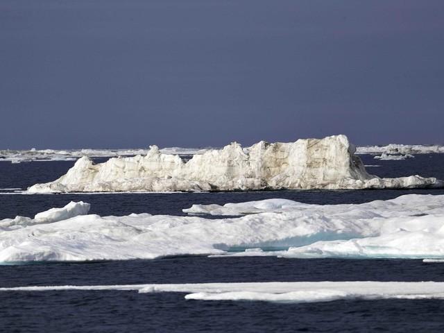 Reflexões sobre o colapso ambiental e como evitá-lo