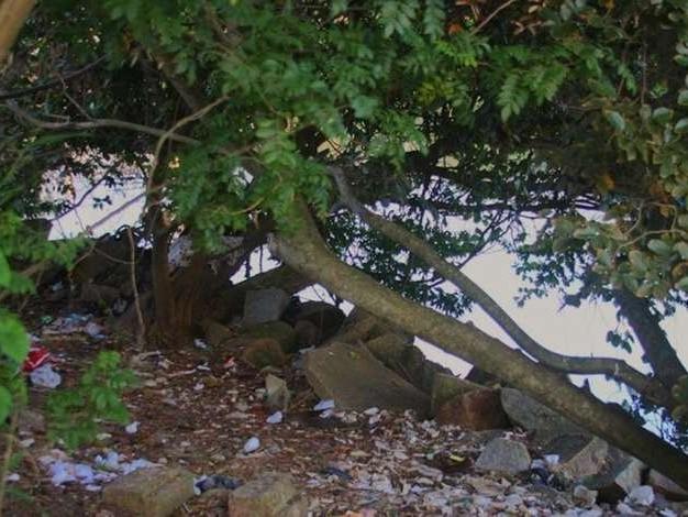Mutirão recolhe lixo jogado indevidamente no entorno da orla do Guaíba