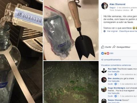 Rapaz enterra vodka em terreno três semanas antes de festival para não precisar gastar dinheiro