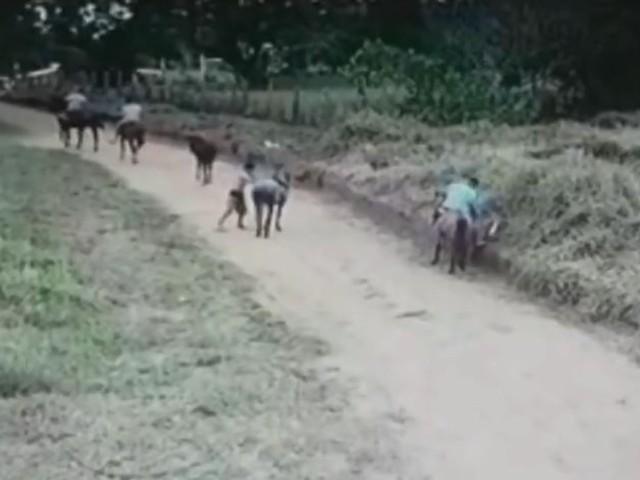 Câmeras de segurança flagram rapaz ateando fogo em terreno de Bauru; vídeo