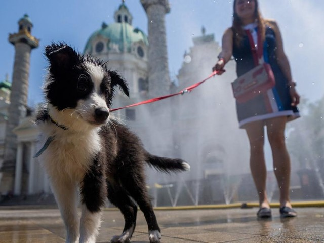 Es wird heiß und heißer: Nächste Hitzewelle ist auf dem Weg