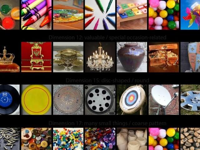 Bunt oder beweglich: 49 Eigenschaften erklären dem Gehirn die Welt