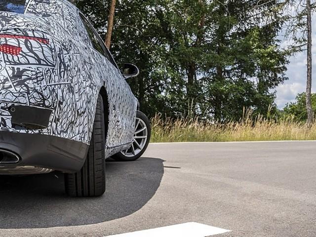 Mitfahrt in der neuen Mercedes S-Klasse W 223: Zebra entlaufen