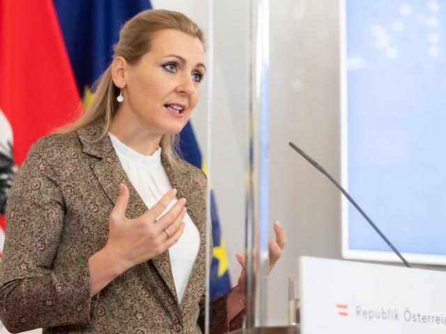 Plagiatsvorwurf: FH prüft Diplomarbeit von Aschbacher